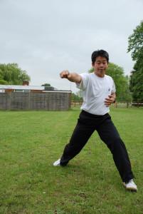 taiji-fist-1